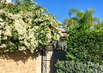 Garten_Eingang